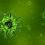 Toutes les informations sur le coronavirus et le diabète – MAJ4